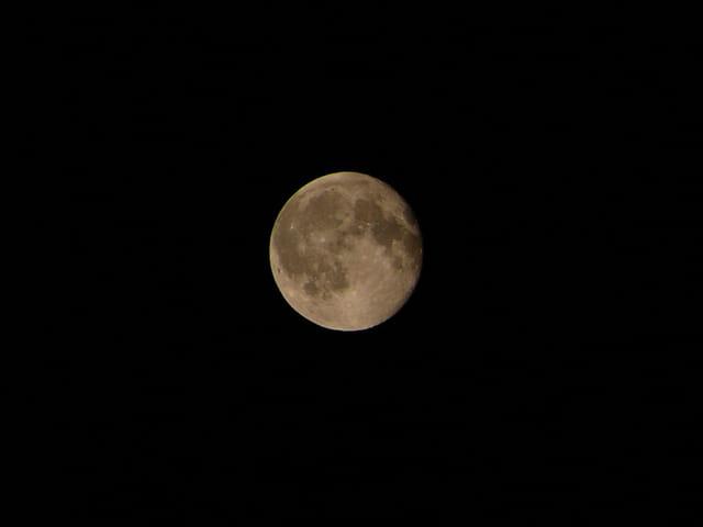 Augusta Moon