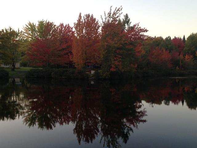 Automne au lac Rocher