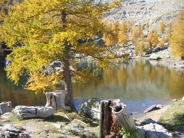 Automne au Lac Vert