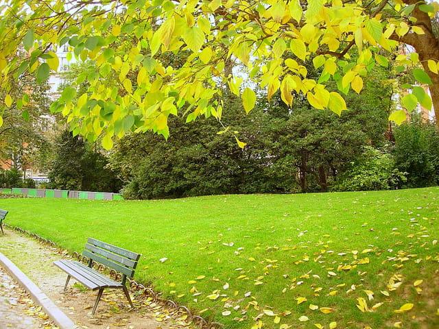 Automne au parc