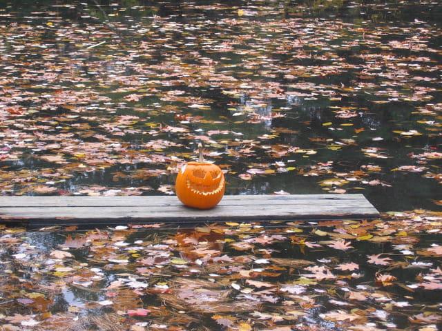 Automne orange sur le lac