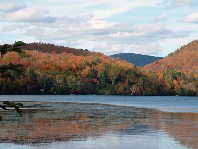 Automne sur le lac aux quenouilles