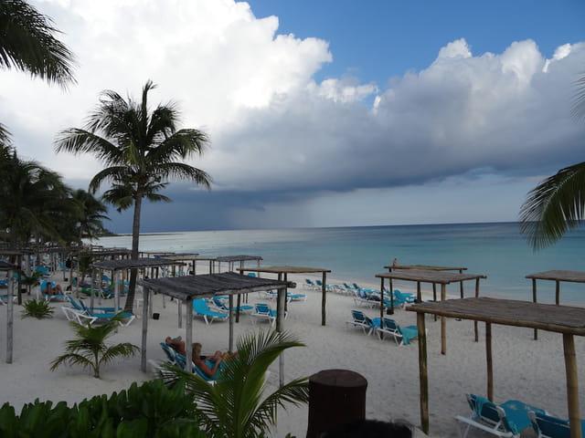 Avant l'orage tropical