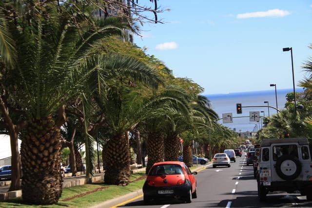 Avenue de Santa Cruz