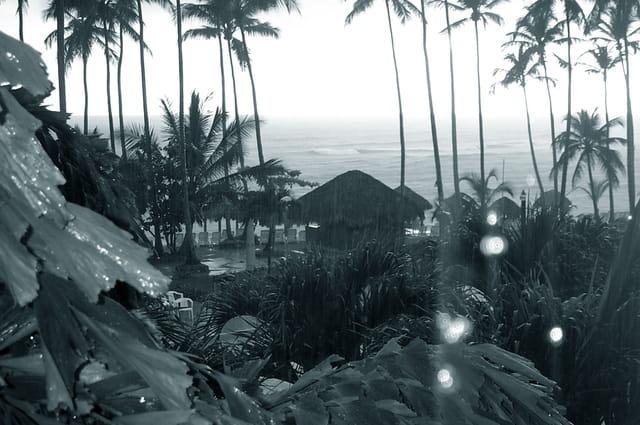 Averse tropicale