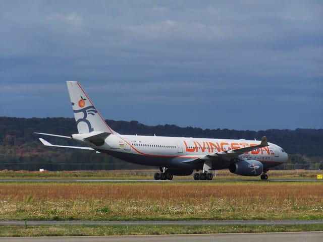 Avion de ligne - Airbus A 330 - Cie Livingston.