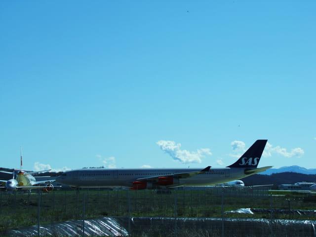 Avion de ligne - Airbus - A 340 - Cie SAS.