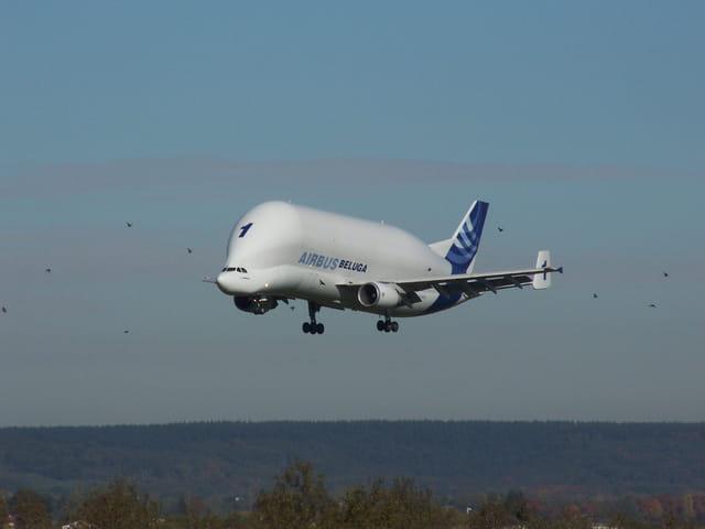 Avion de ligne Airbus Beluga.
