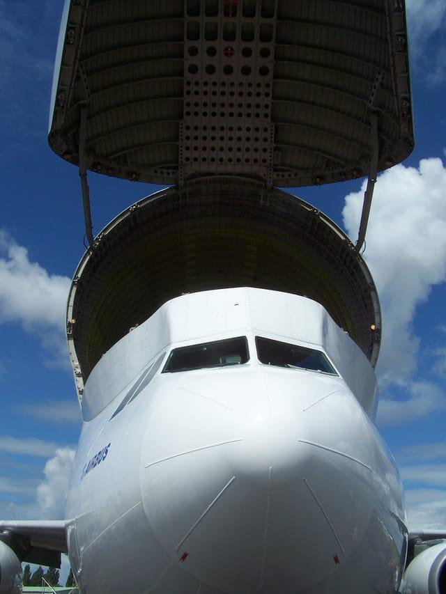 Avion de ligne Airbus Beluga - La baleine.