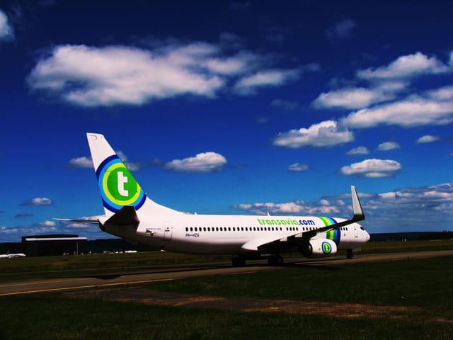 Avion de ligne Boeing 737-800 - Cie Transavia.