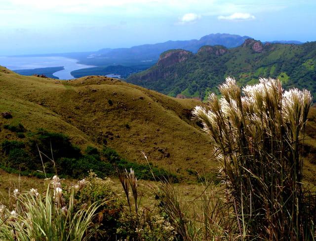 Baie de Chame