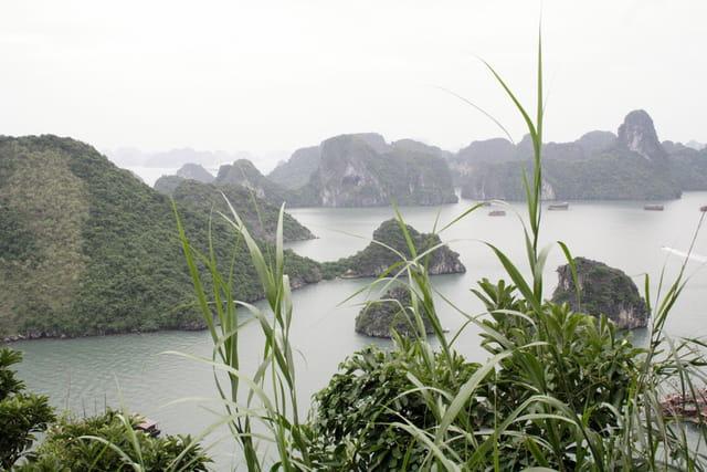 Baie de Ha Long