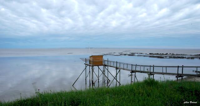baie de l'Aiguillon au petit matin