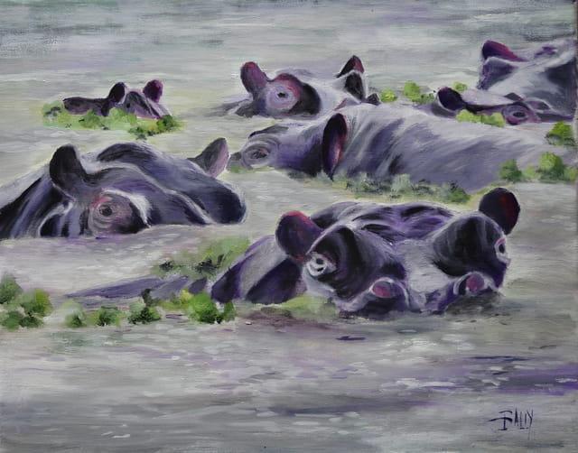 Baignade matinale des hippopotames