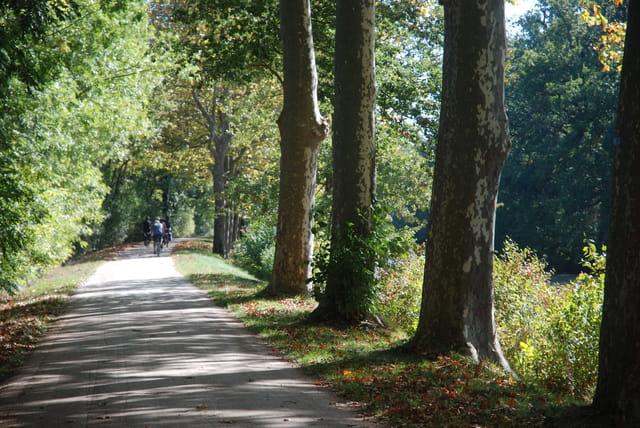 balade le long du canal du Midi