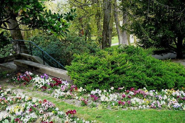 Balade printanière  dans le jardin botanique N° 1