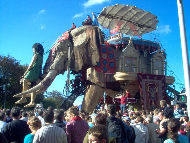Ballade de l'elephant