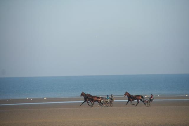 ballade pedestre sur la plage