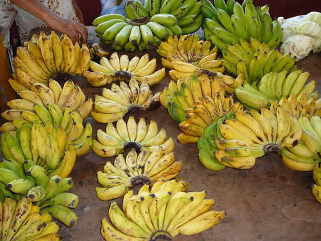 Bananes variées