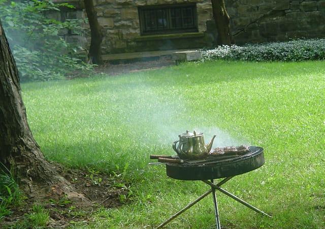 Barbecue et the a la menthe