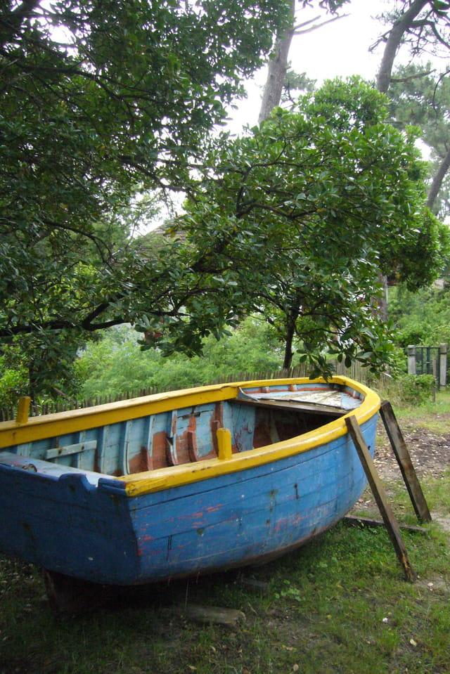 Barque au sec