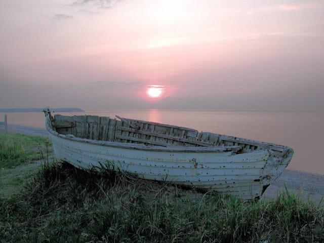 Barque brume