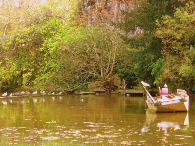 Barque en automne