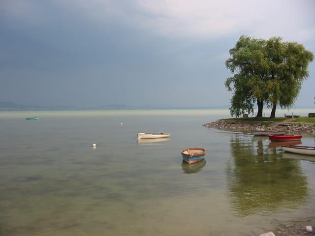Barques au bord du balaton