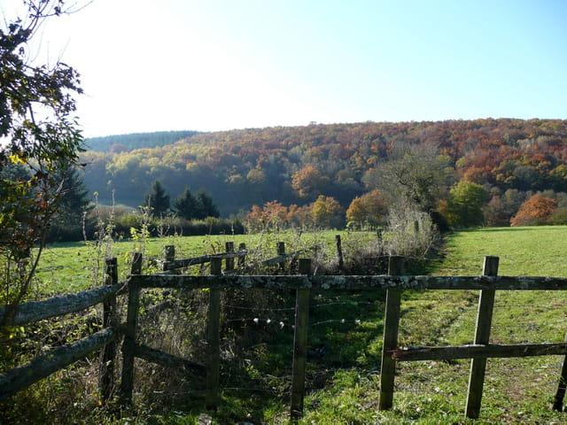 Barrière de bois et paysage d'automne