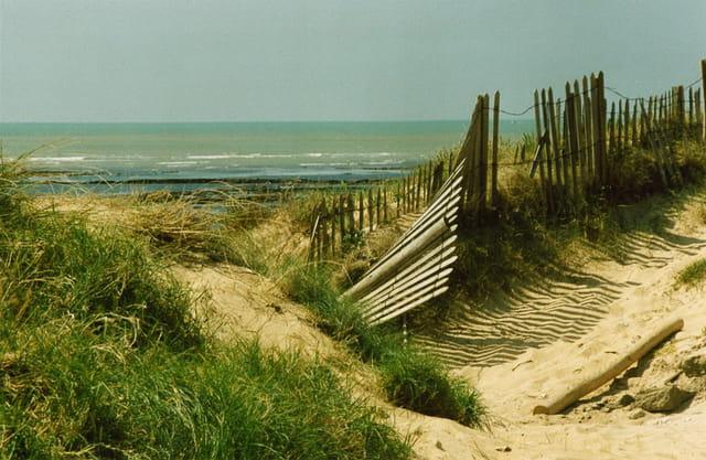 Barrière sur la dune