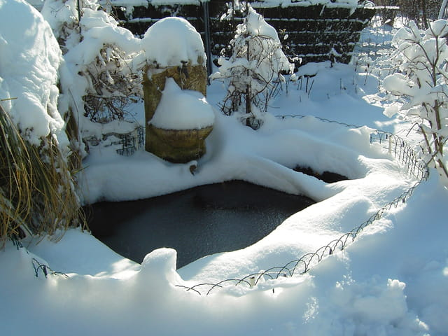 Bassin sous la neige