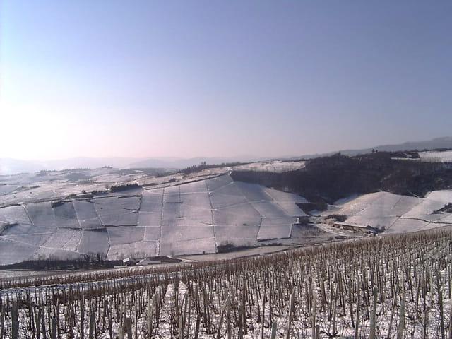 Beaujolais sous la neige