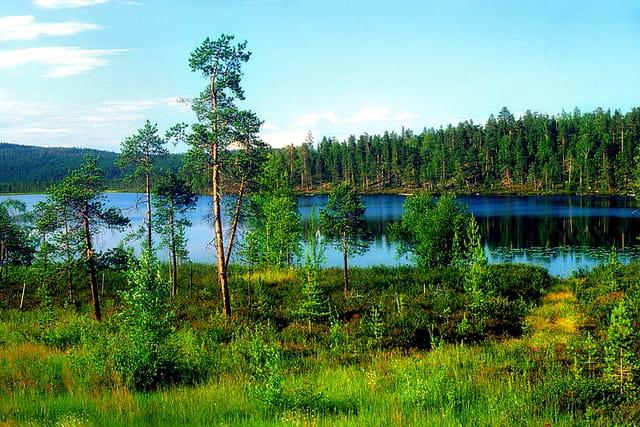 Beauté de la nature finlandaise