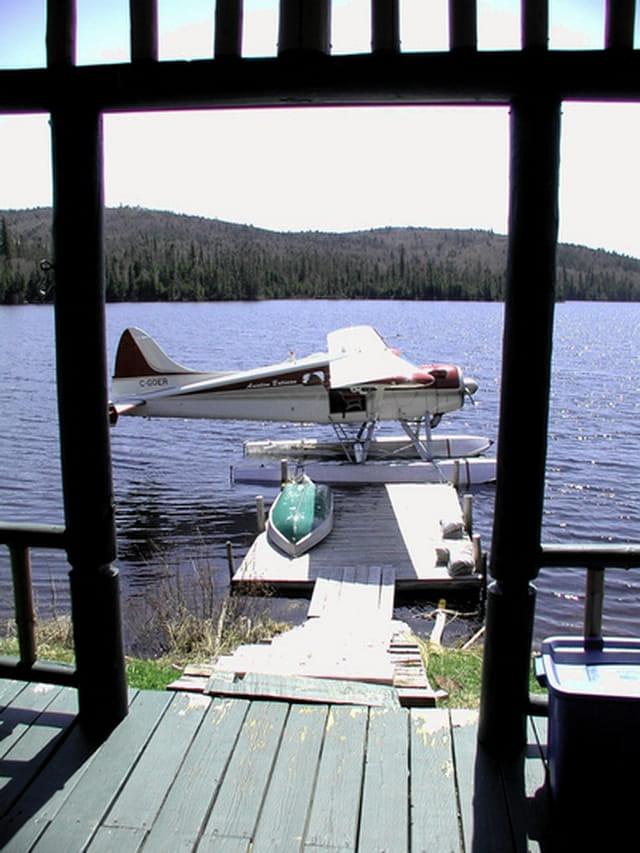 Beaver au lac Light
