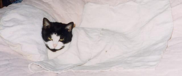 Bébé au lit