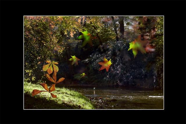 Berges aux couleurs d'automne
