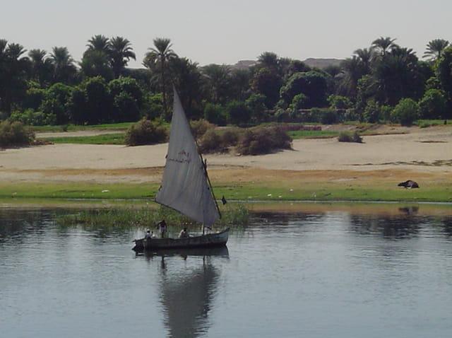 Berges du Nil