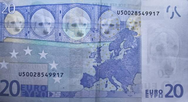 Billet euros insolite