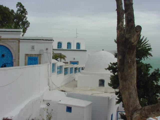 Blancheur tunisienne