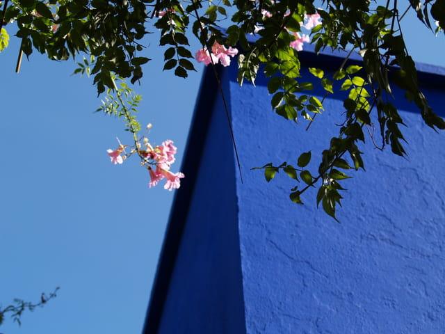 Bleu ciel et bleu Majorelle