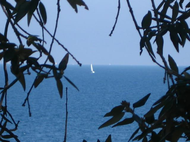 Bleu mediterranée