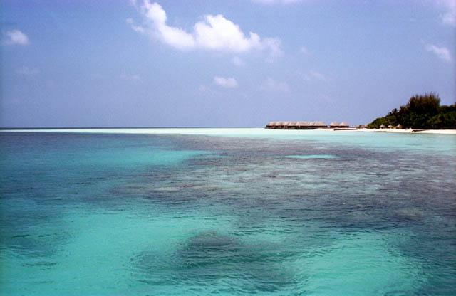 Blues aux Maldives