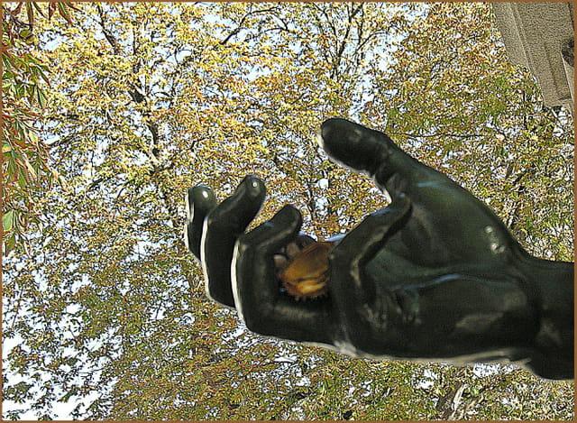 Bonjour l'automne .....