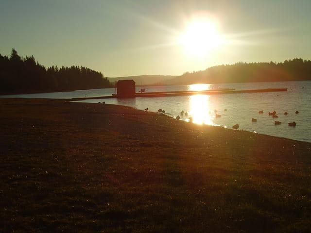 Bonne nuit le soleil