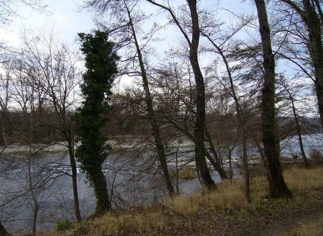 Bord de riviere