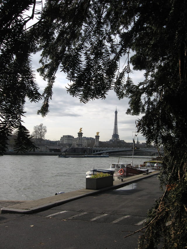 Bords de la seine
