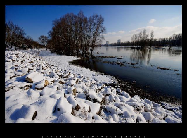 Bords de Loire sous la neige