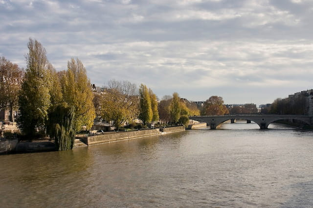 Bords de seine, automne