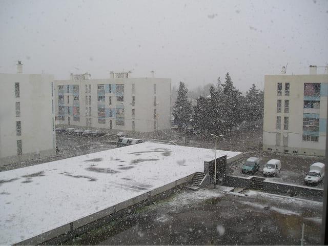 Boumerdes sous la neige