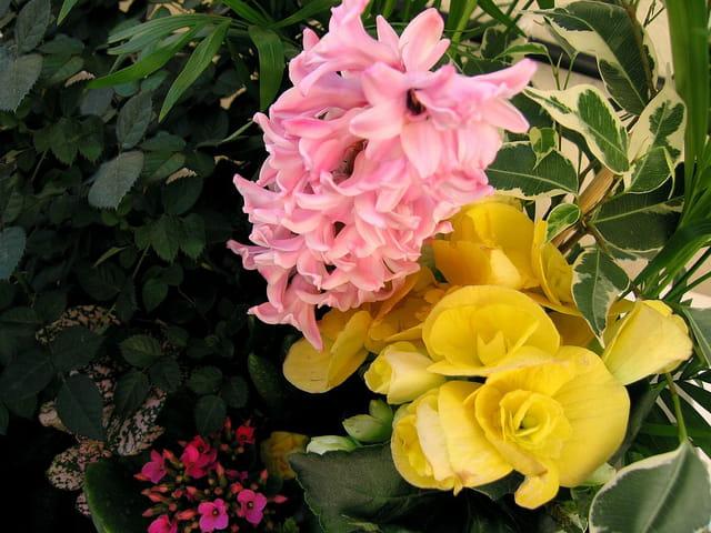 Bouquet (94)